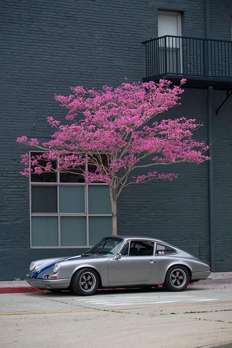 porsche_blossom